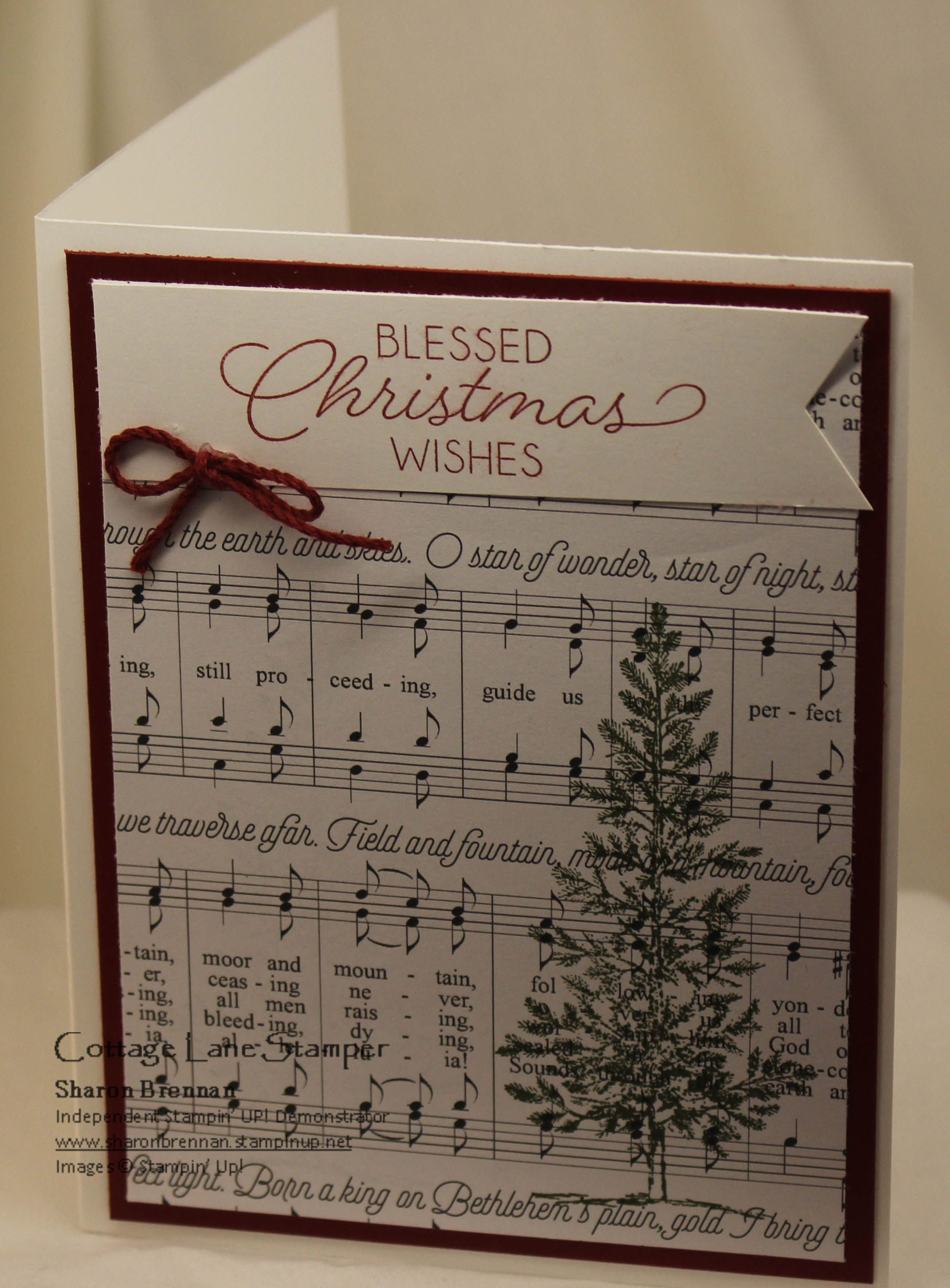 Stampin Up Merry Christmas DSP Night of Bethlehem sentiment and