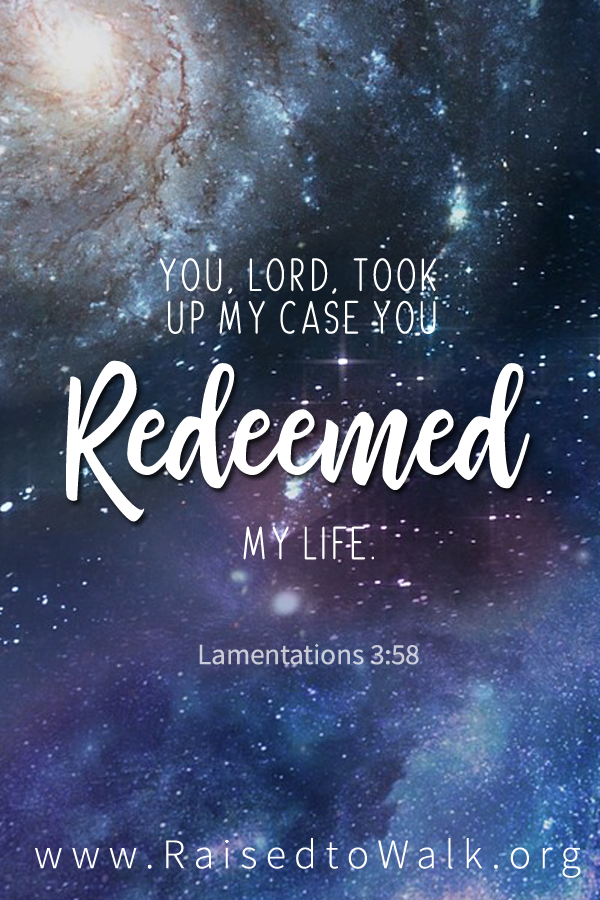 You Lord took up my case you redeemed my life