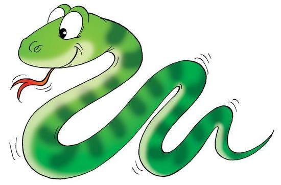 resultado de imagen para dibujo de serpiente dibujos para colorear