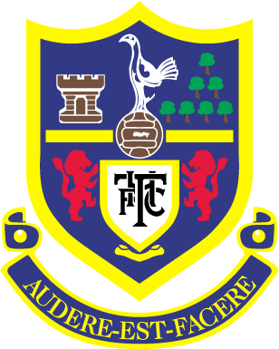 Pin On Soccer Badges Patches