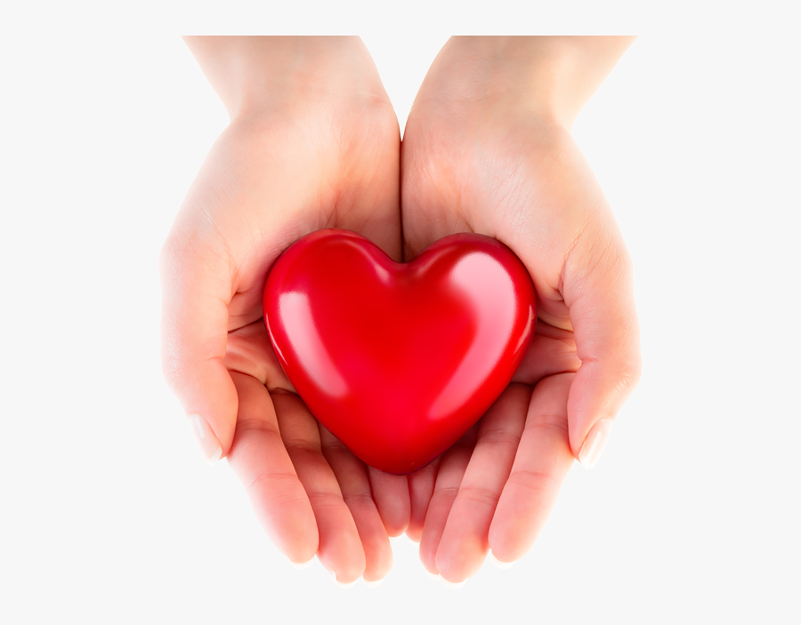 Transparent Hand Heart Png Heart In Safe Hands Is A Free Transparent Background Clipart Image Uploaded By Cass Pure Cocoa Butter Custom Gift Cards Cocoa Nibs