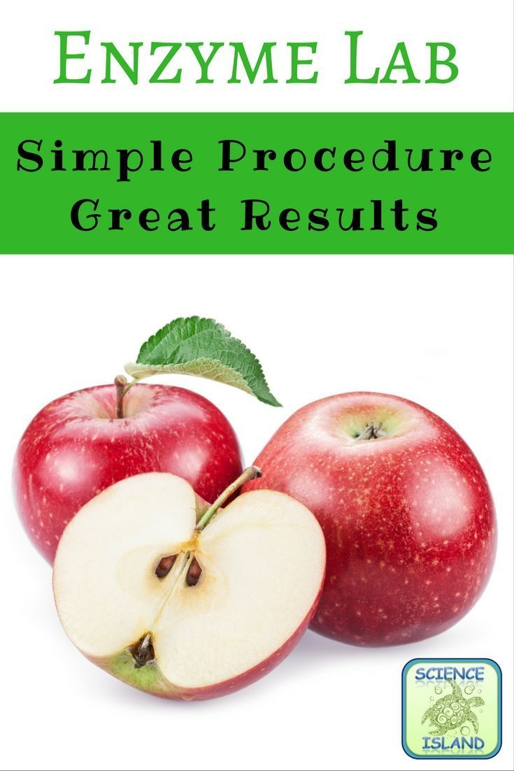 enzyme lab the effect of pectinase on the production of apple