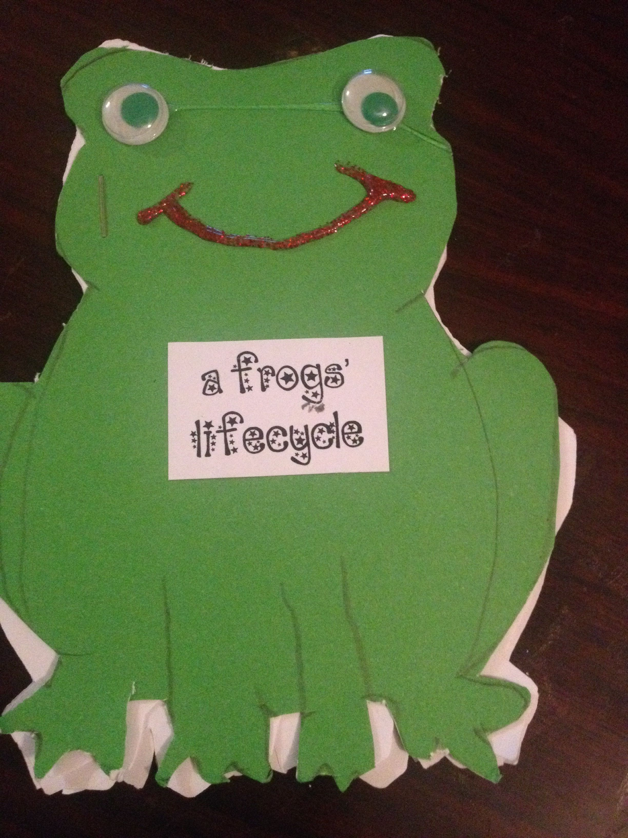 Frogs Life Cycle Booklets Children Sequenced The Life