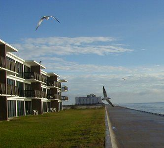 Island House Condominiums Corpus Christi Beach Getaway With