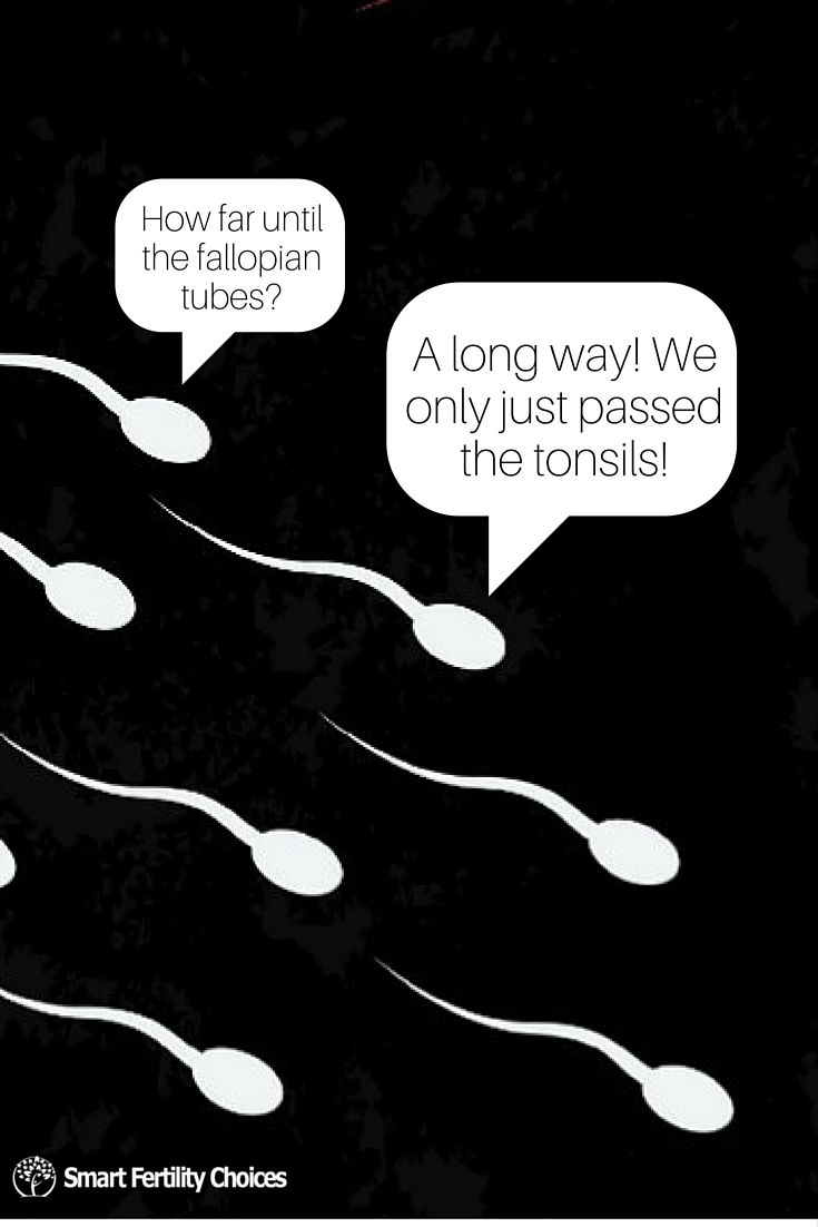 Pin On Infertility Humor