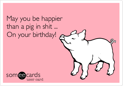May you be happier than a pig in shit on your birthday free and funny birthday ecard may you be happier than a pig in shit on your birthday bookmarktalkfo Image collections