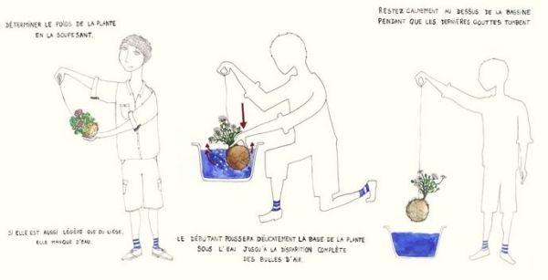 Kokedama Gras Bonsai-züchten Tipps