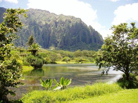 Hoomaluhia Botanical Gardens Oahu Hawaii   Mountains Wallpaper ID 1536522    Desktop Nexus Nature
