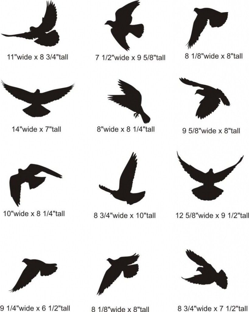 Best 100 Bird Tattoo Designs For The Bird Lover Bird Silhouette Tattoos Small Bird Tattoos Silhouette Tattoos