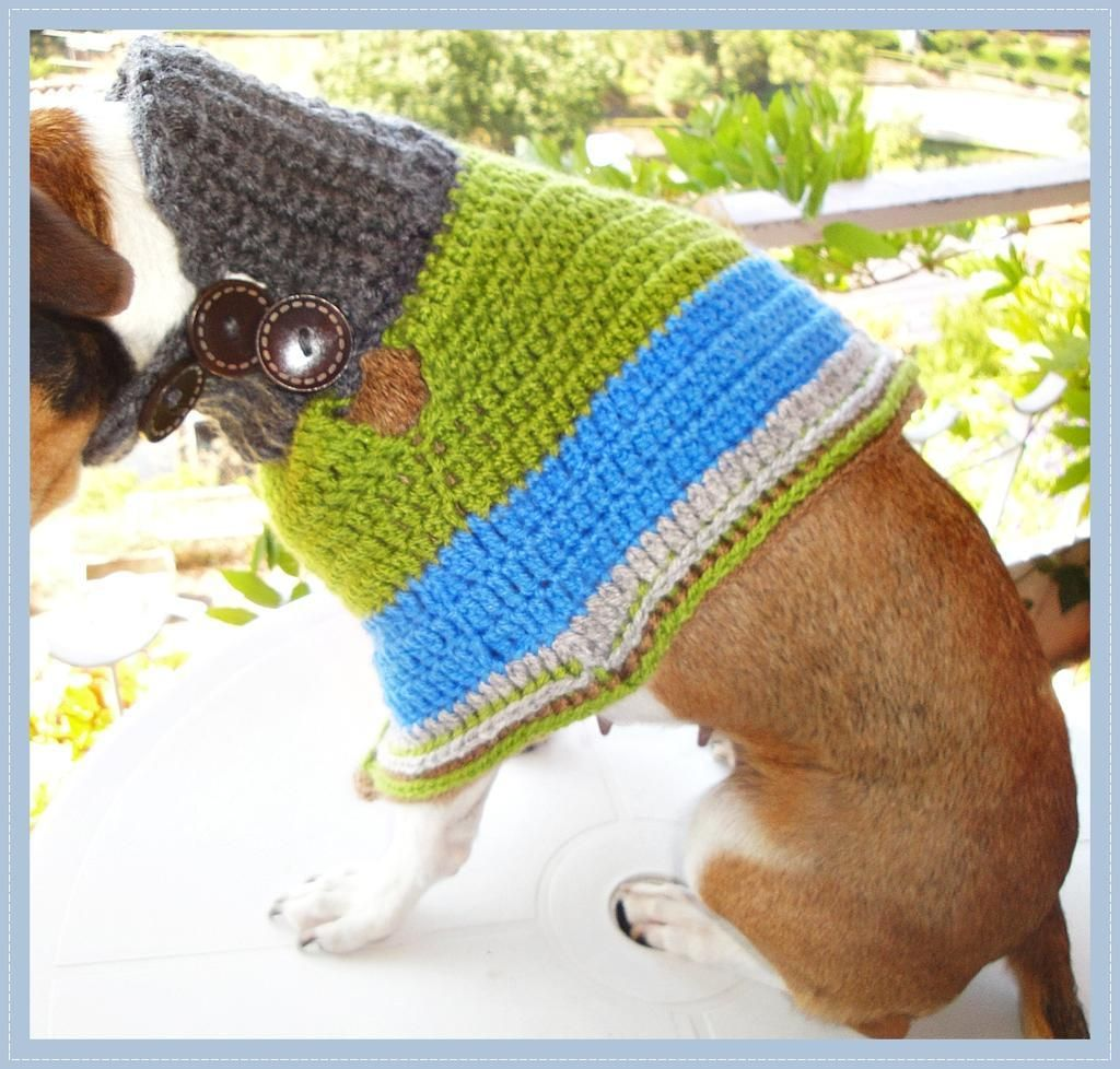 Crochet Dog Sweater Patterns You & Your Pup Will Love | Patrones ...