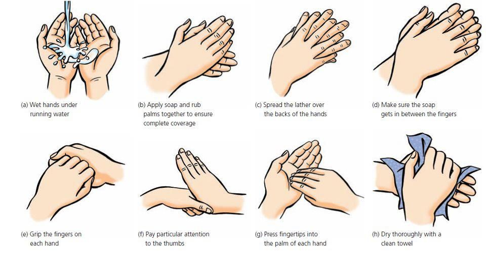 Hand Washing Technique | Raising C Diff Awareness | Pinterest ...