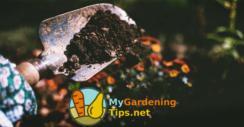 Soil Testing: Unlock the Secret to Making Your Garden Thrive -