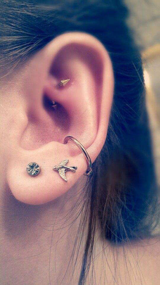 14g Conch Piercing Ring 16g Rook Piece I Adore These Pieces