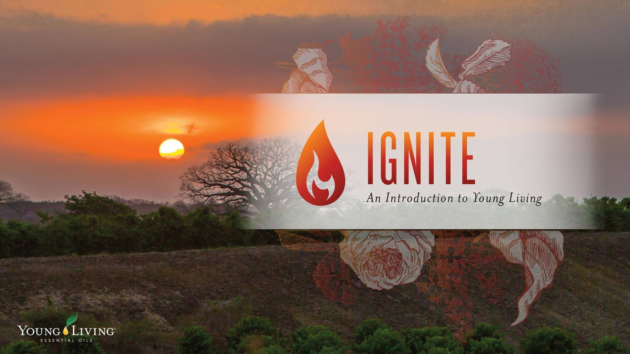 IGNITE & ACCELERATE EVENTS   REGISTER TODAY!  IGNITE your passion for essential oils as you join us for an Introduction to Young Living.   ACCELERATE your wellness, purpose, and abundance. Experience a more advanced look at essential oils and what they can offer your friends and family.  Don't miss out on these truly inspirational events. Follow the links below to register now  IGNITE  https://www.youngliving.com/en_AU/company/events/educational-events/Ignite_2015?v=y&rnd=1441768522106