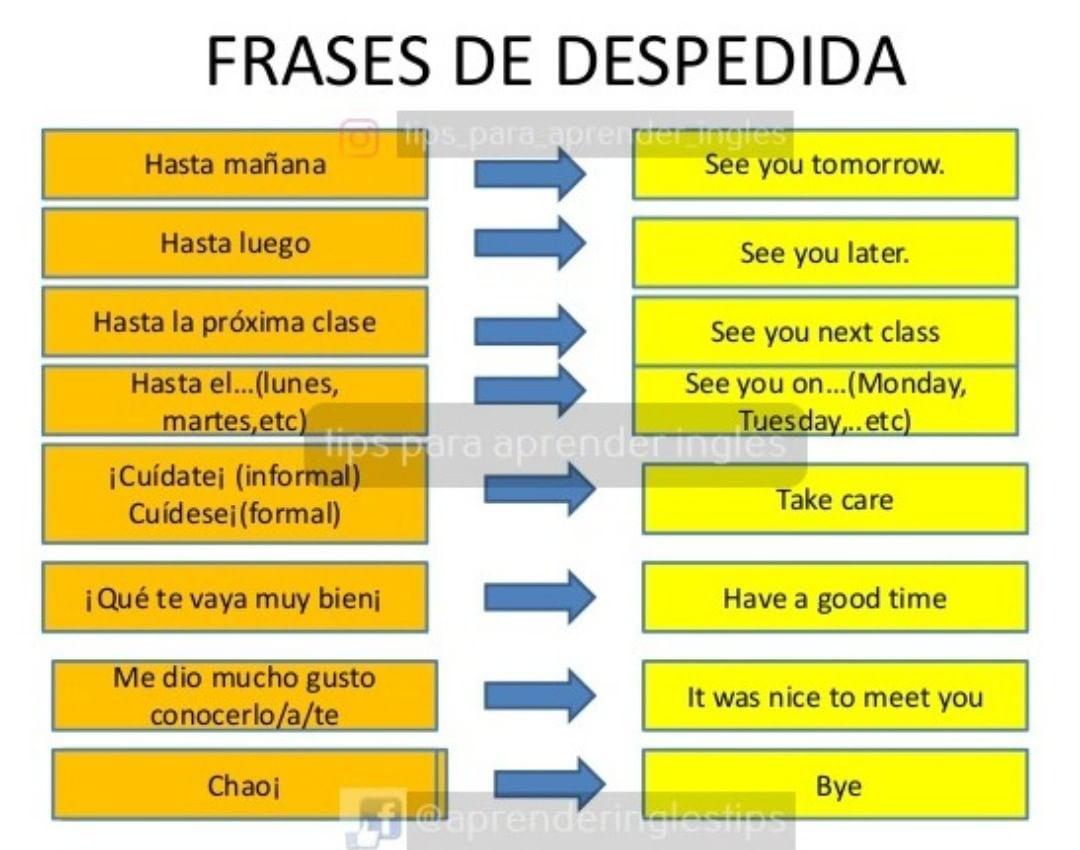Frases De Despedida Study Tips
