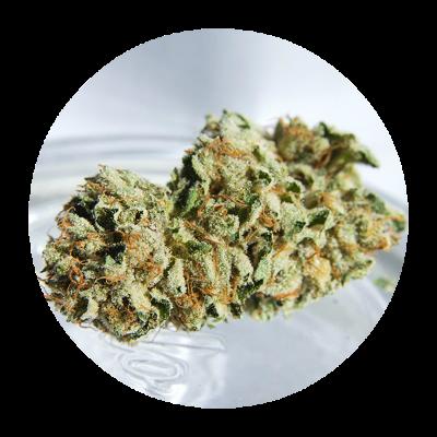 Купить марихуану пермь употребление конопли лурк
