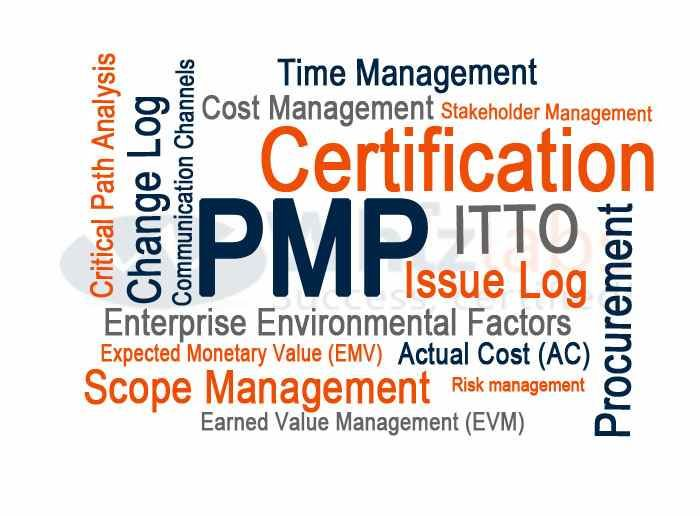 Project Management Professional (PMP®) Certification For David