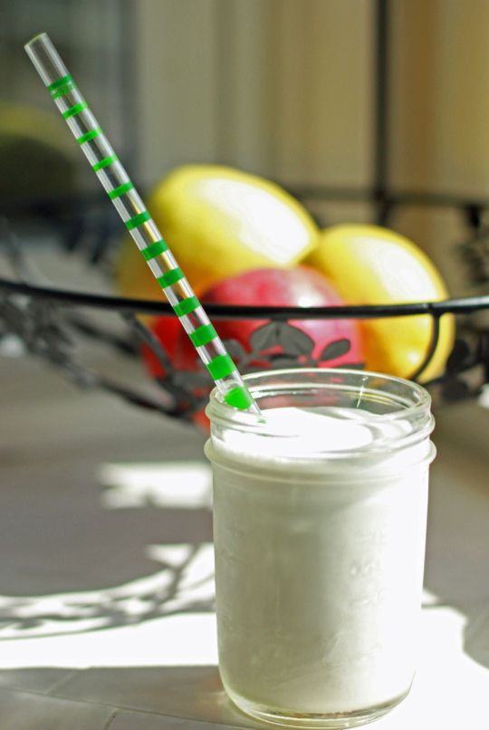 Ketogenic Vanilla Protein Shake | In Case We Ditch Carbs ...