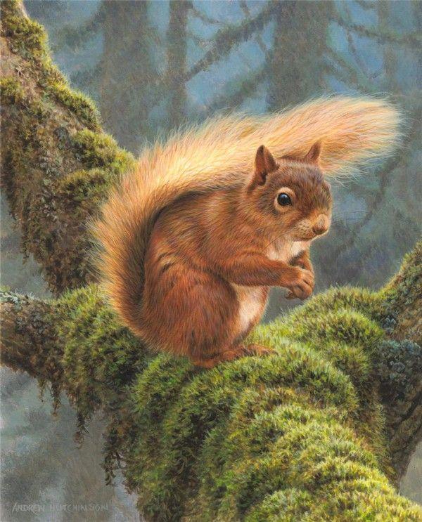 animaux en peinture ecureuil pinterest cureuil animal et peinture. Black Bedroom Furniture Sets. Home Design Ideas