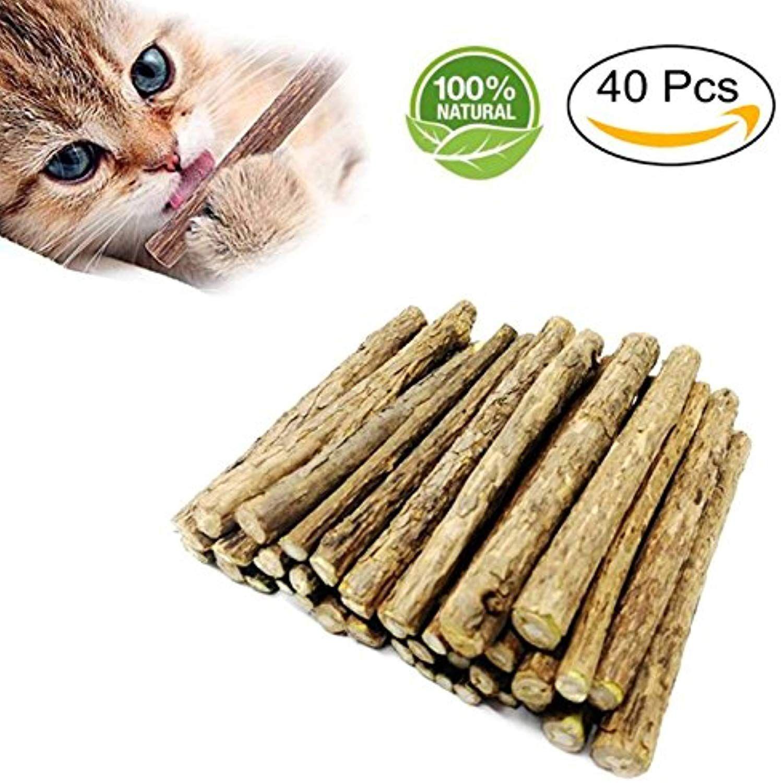 Fanxieast Cat Catnip Sticks 40 Pieces Cat Catnip Natural Matatabi