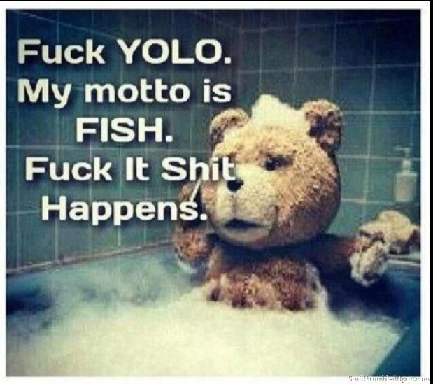 9017c07512eaf49f1ae8064fc085af13 funny ted the movie quotes ted movie bear movie yolo fish