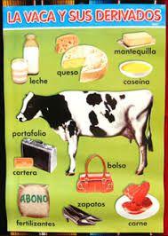 imagenes derivados de la leche de vaca