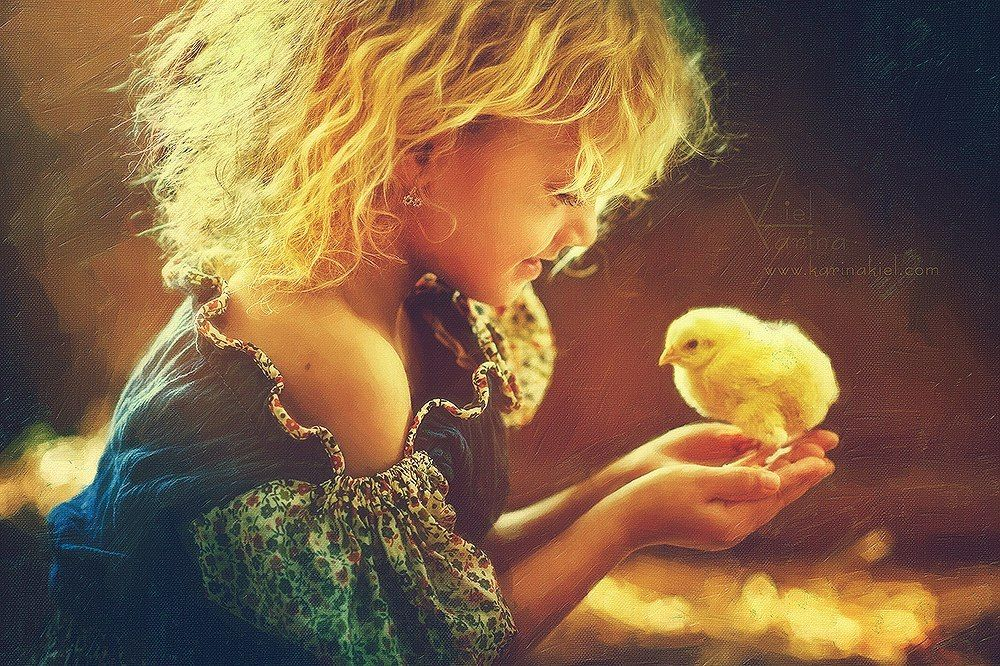 Sweetness and baby chick