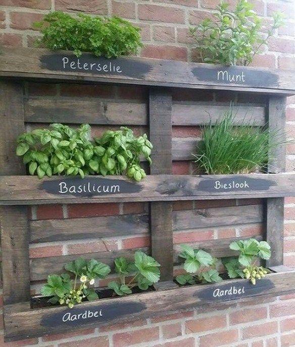 5 Vertical Vegetable Garden Ideas For Beginners: Small Vegetables Garden For Beginners