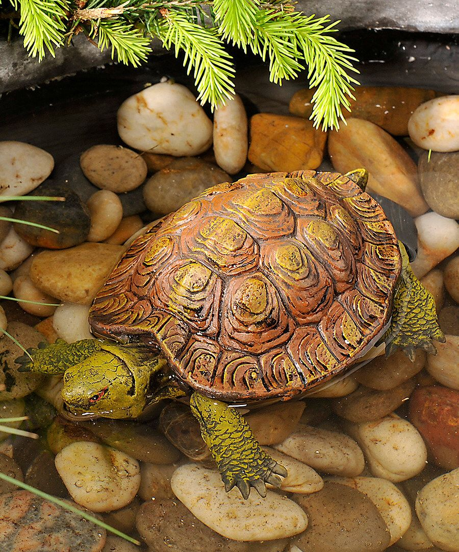 Look at this Floating Turtle Garden Statue on #zulily today!   I ...