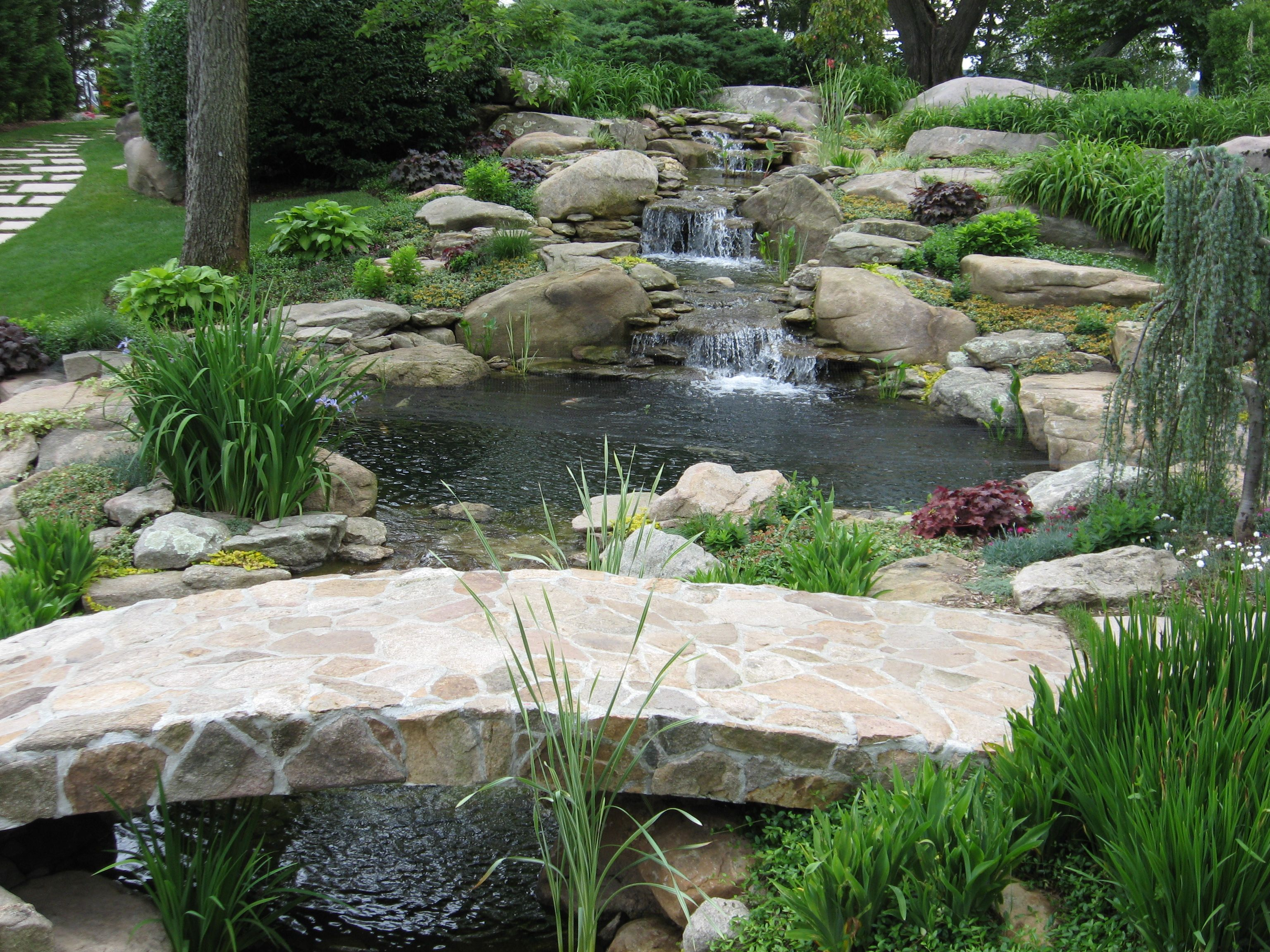 Backyard waterfalls water garden koi pond and streams for Fish pond fountain design