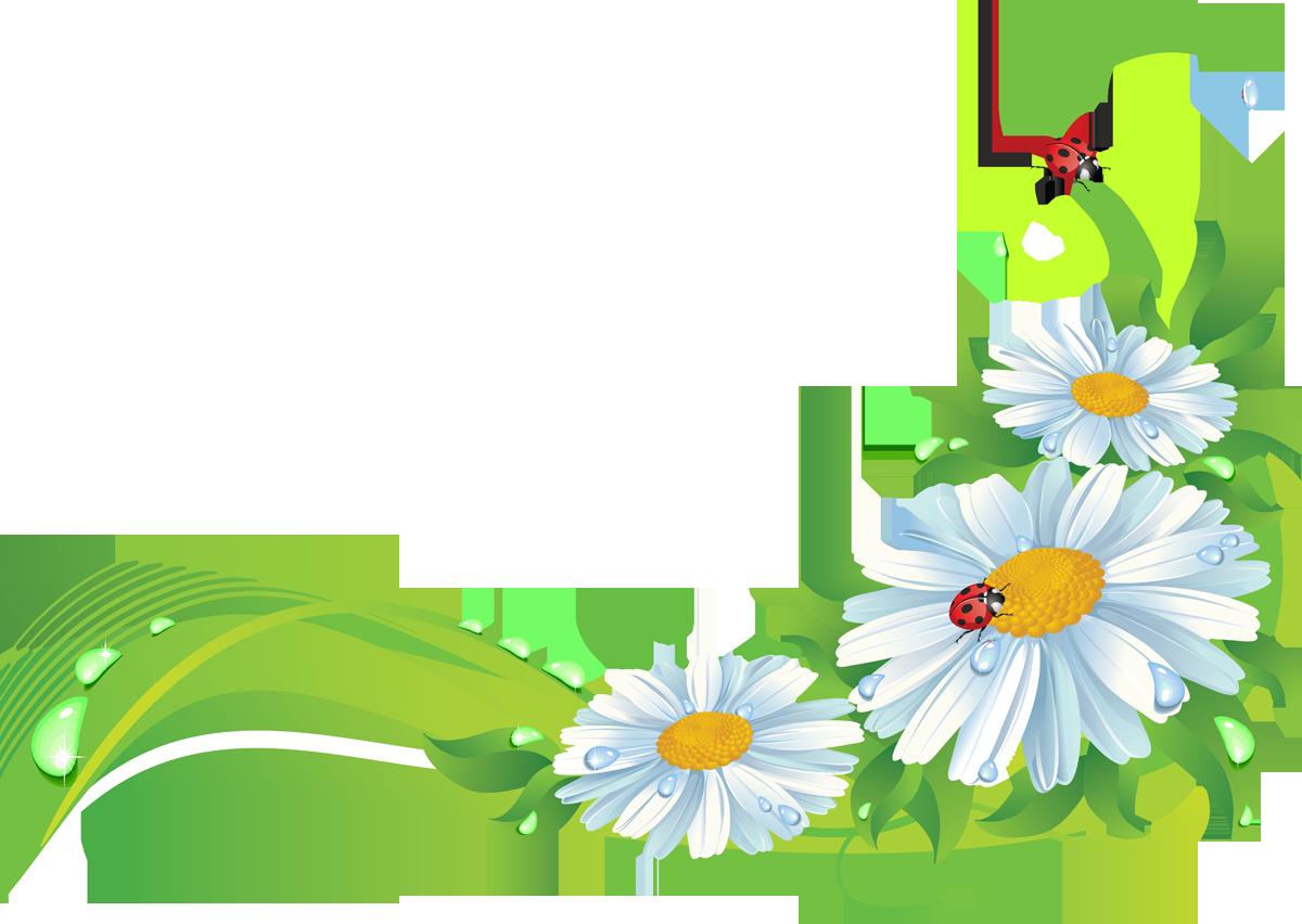 Пятницей, картинки цветов для оформления в детском саду