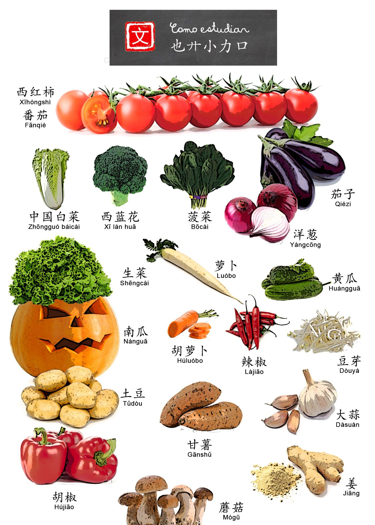 Chinese Vegetables Word List