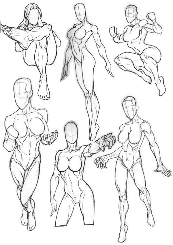 Pin by No Way on Bodies   Pinterest   Anatomy, Art reference and ...