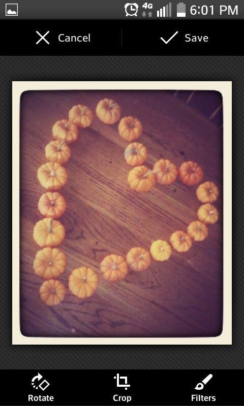Pumpkiins !