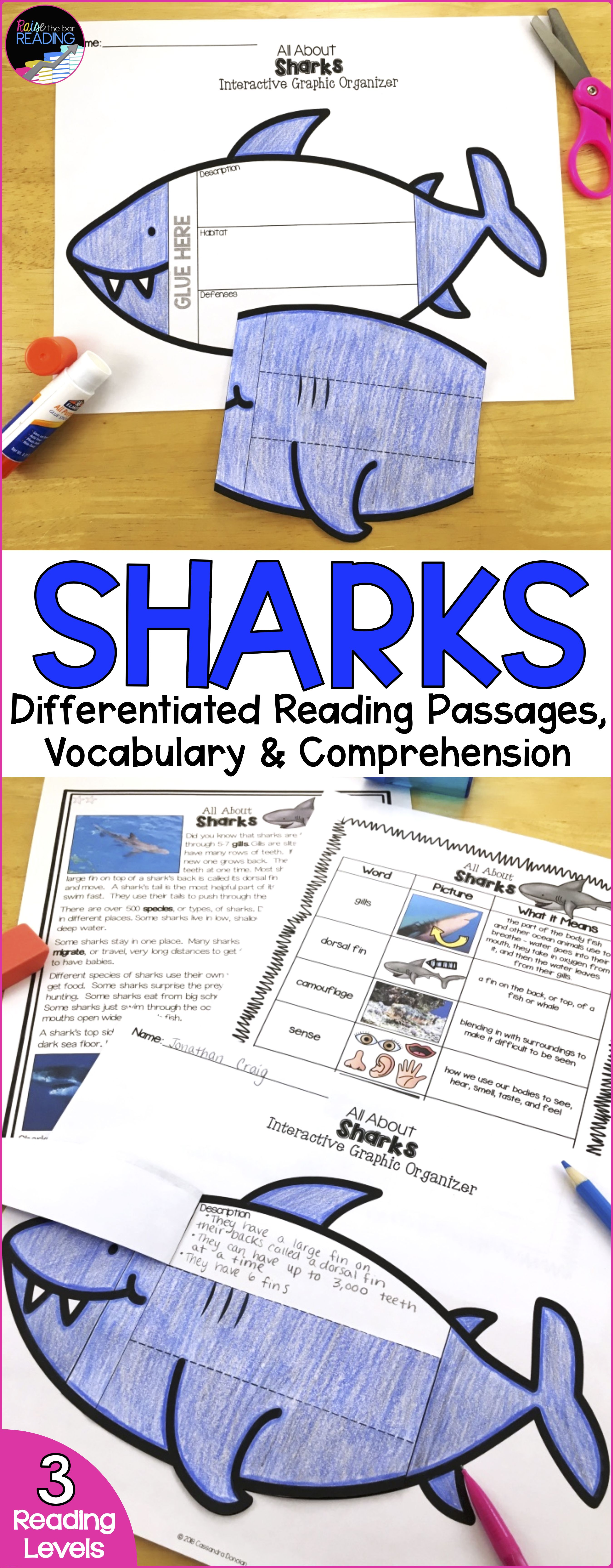 Ocean Animals Reading Differentiated Sharks Reading