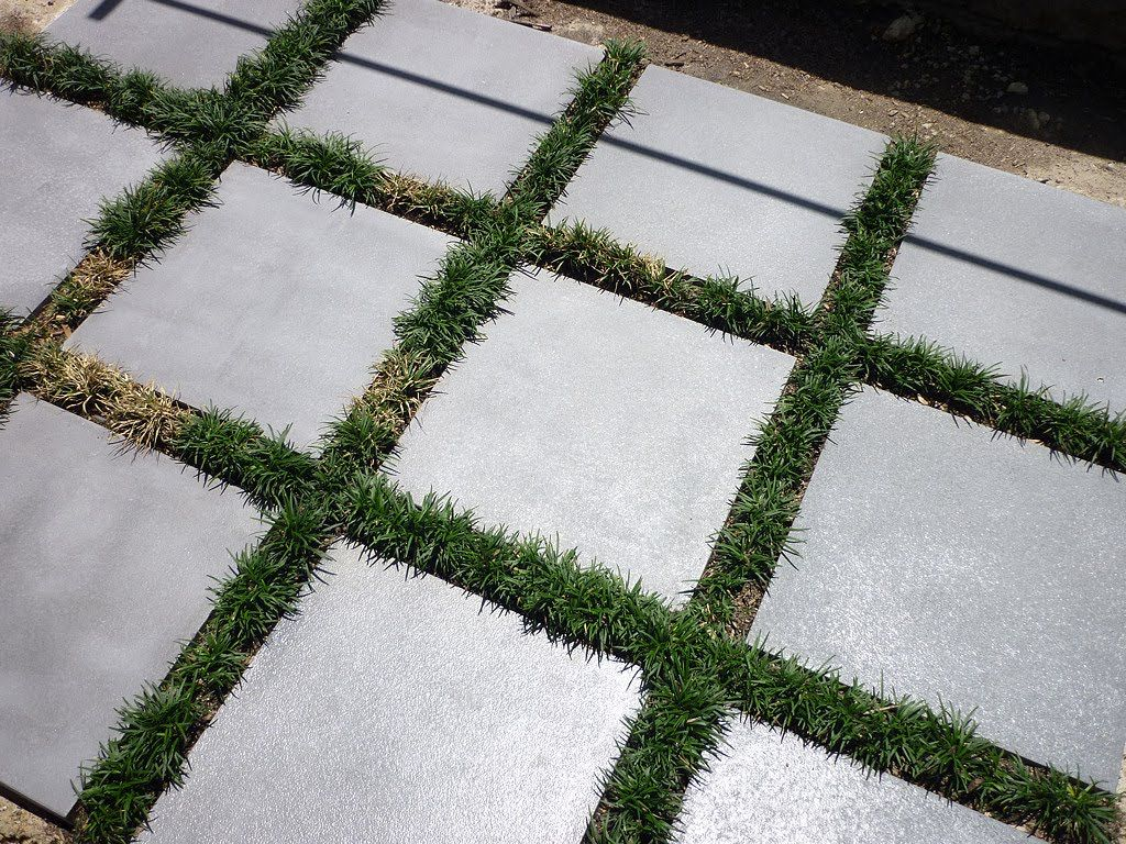 Outdoor Modern Landscaping Design Feature Concrete Patio Grass Paver And  Green Grass Line Accent For Grid Theme Idea.