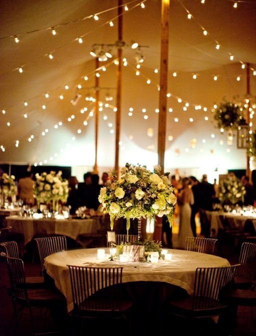 wedding string lights cafe lights tent tent lighting green and white home wedding in Virginia by katie stoops photography & Katie Stoops Photography Skyline Tents Bellwether Events power ...