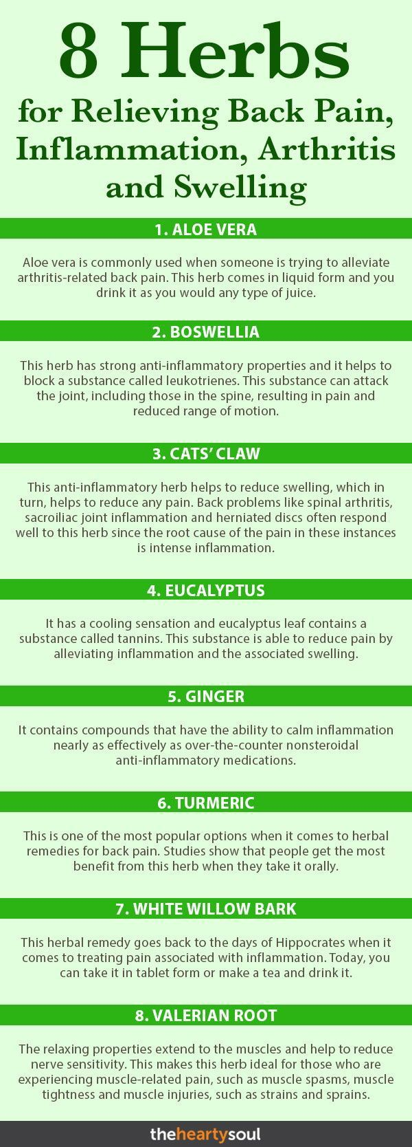 8 Herbs for Relieving Back Pain, Inflammation, Arthritis and