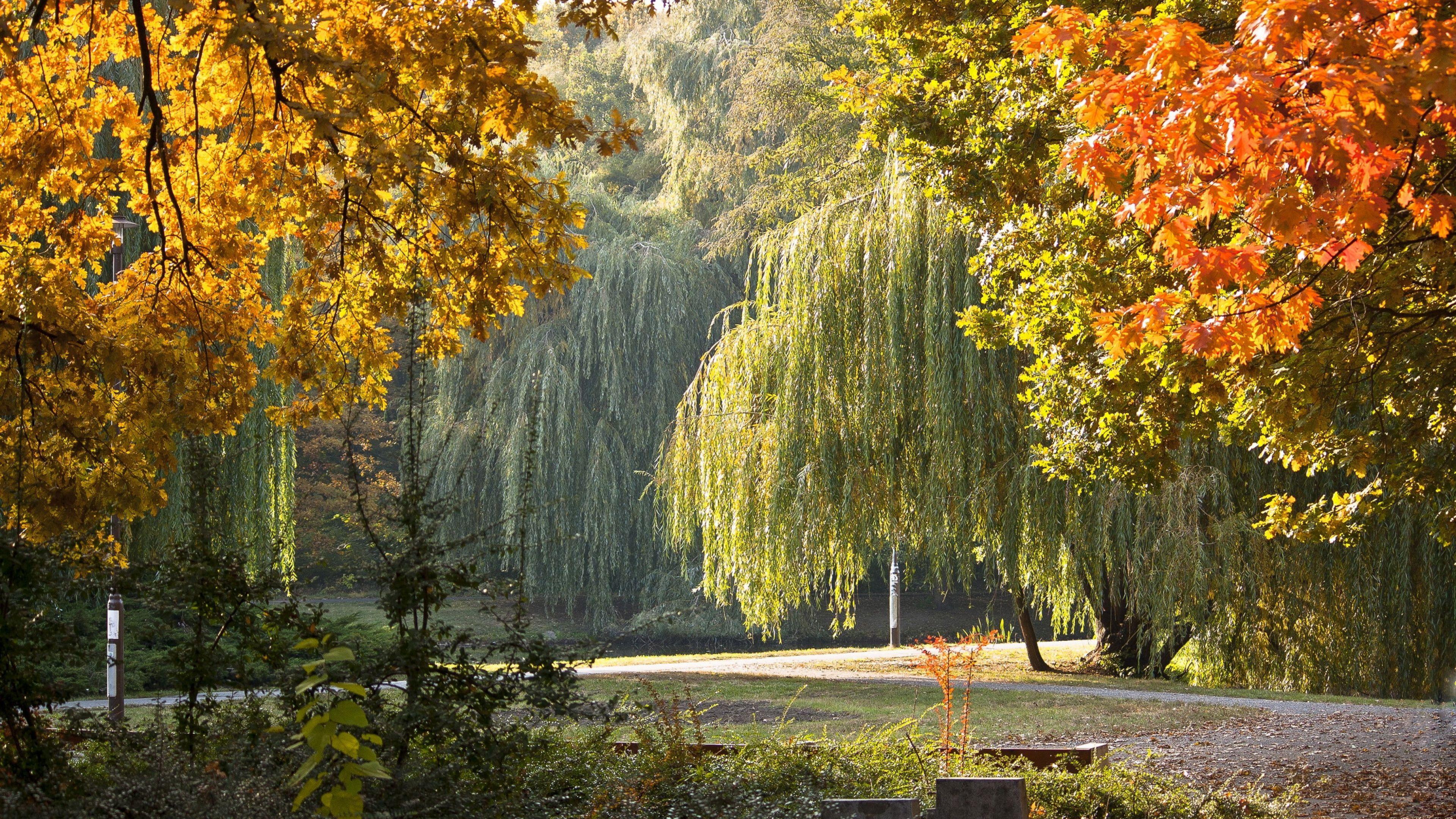 Download Wallpaper 3840x2160 Park Hungary Autumn Landscape 4k Ultra Hd Hd Background Nature Desktop Wallpaper Autumn Landscape Nature Wallpaper