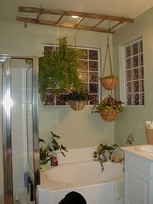 Diy Plants Hanging From Ladder Decorations