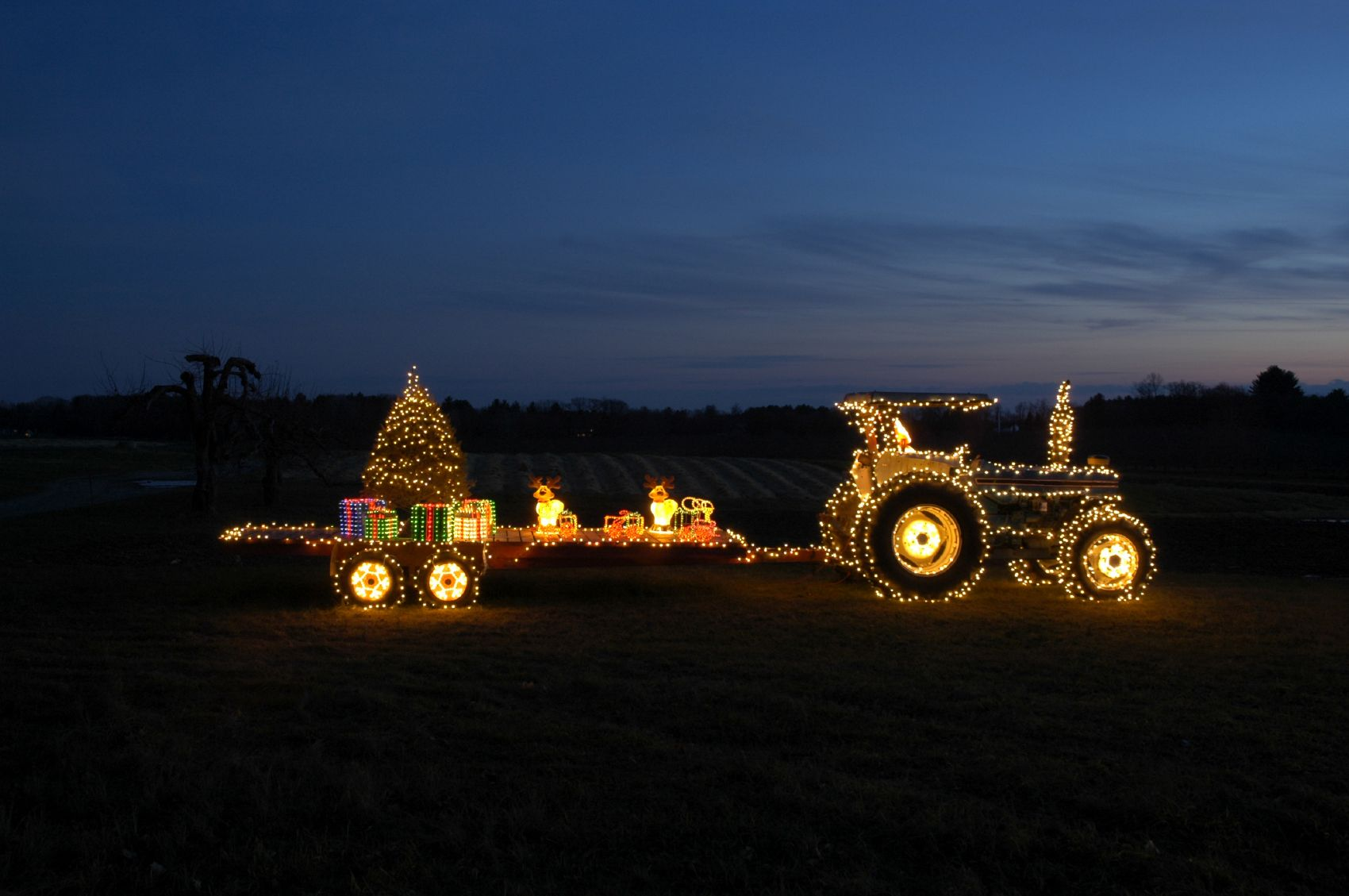 Christmas Traditions Decorating the tractor. Christmas