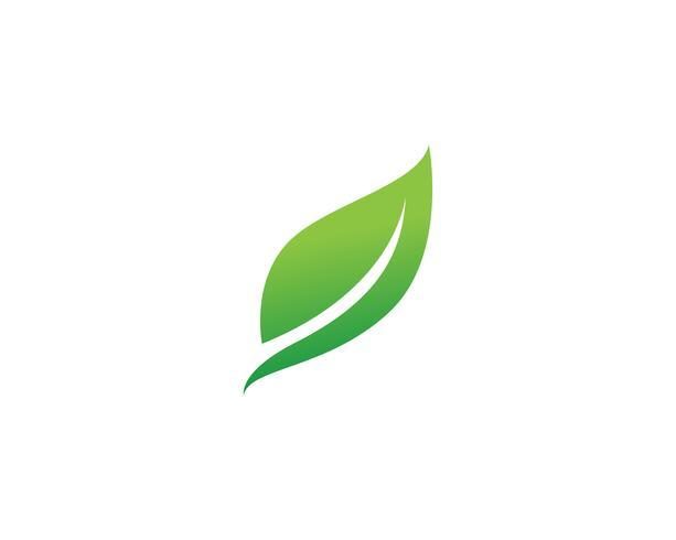 Green Leaf Logo Design Leaf Clipart Green Leaves Logo Png Transparent Clipart Image And Psd File For Free Download Logo Design Free Templates Leaf Logo Logo Design Free