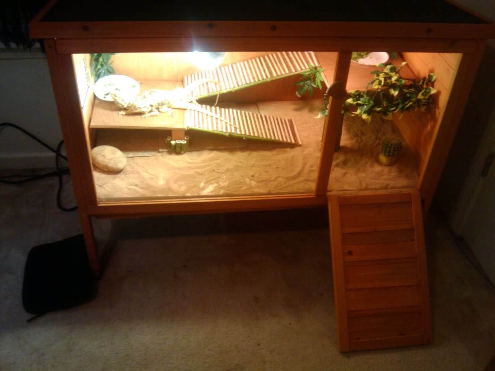 terrarium furniture. diy bearded dragon terrarium google search furniture