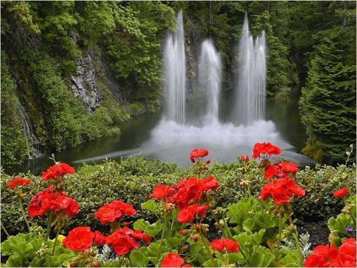 Fondo Pantalla Paisaje Cascadas Y Naturaleza: Paisaje Hermosos Con Flores