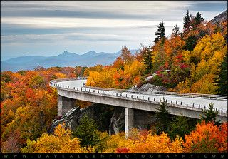 Linn Cove Viaduct - Blue Ridge Parkway Fall Foliage