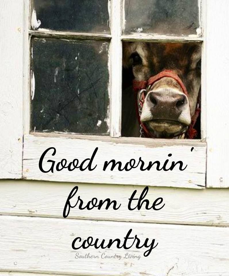 Good Morning Country Life Country Farm Everything Country