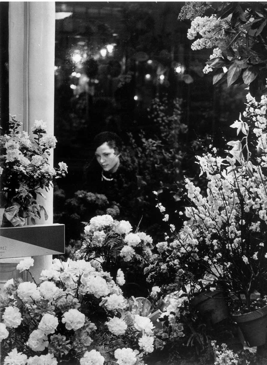 Brassaï at the floristus paris us paris des rêves paris