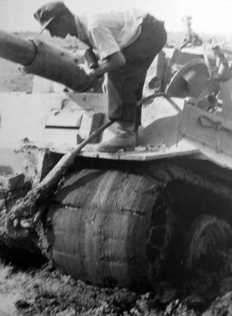 Tiger1 recovery