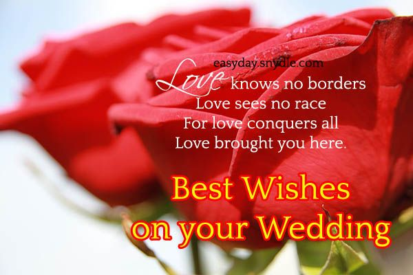 Wedding Wishes Messages Quotes And Greetings