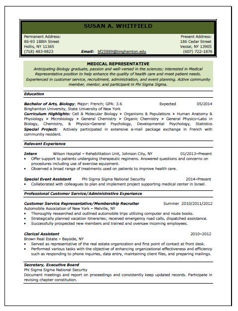 Professional sales resume writing service